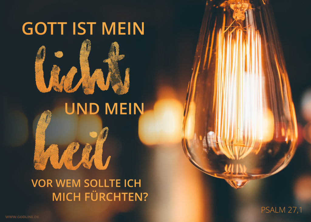 mein-licht